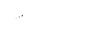 Michigan Business Designs
